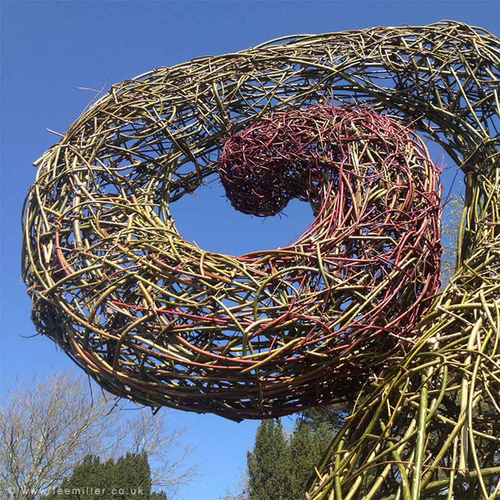 Detail of willow sculpture by Two Circles Design displayed in Farleys garden