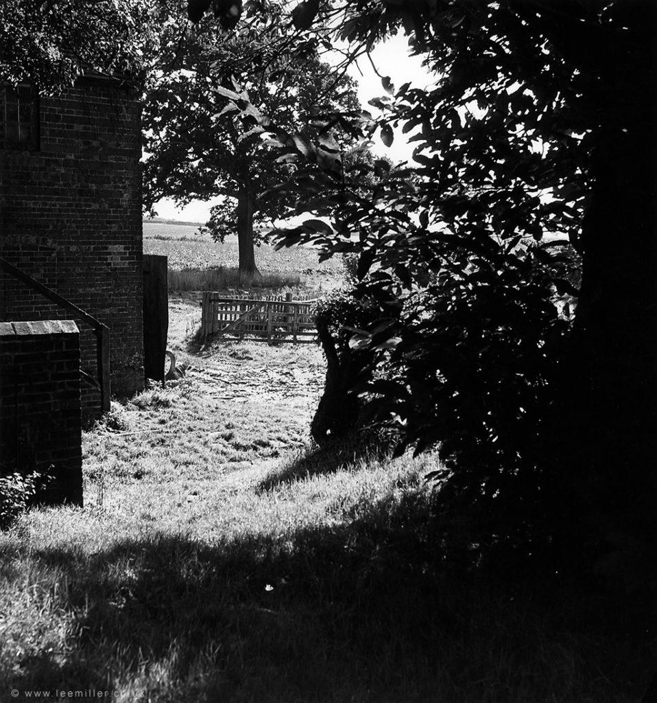 View of Farleys garden with fields beyond